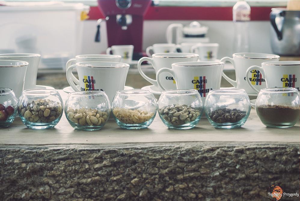 jak powstaje kawa