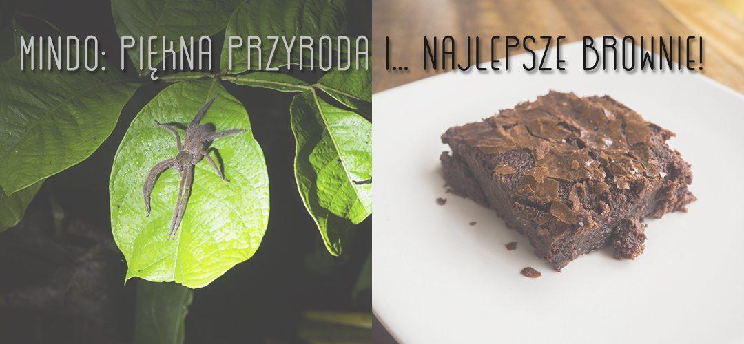 Mindo – piękna przyroda i… najlepsze brownie!