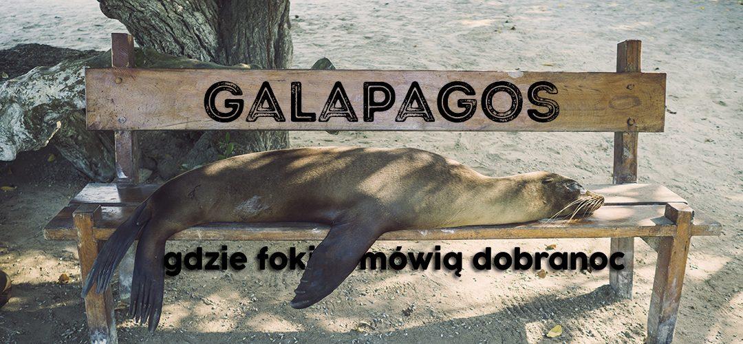 Galapagos. Gdzie foki mówią dobranoc