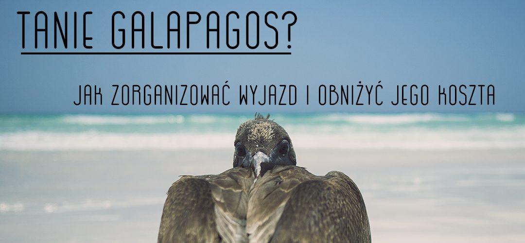 Tanie Galapagos? Jak zorganizować wyjazd i obniżyć jego koszta