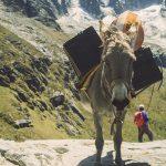 Ameryka Południowa Peru
