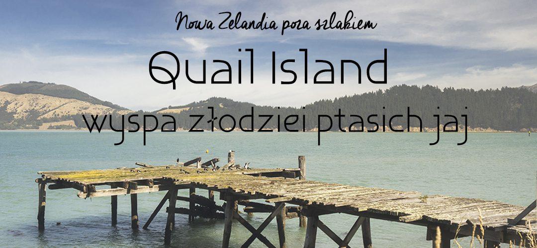 Nowa Zelandia poza szlakiem: Quail Island, wyspa złodzeji ptasich jaj