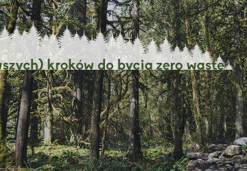 19 (pierwszych) kroków do bycia zero waste