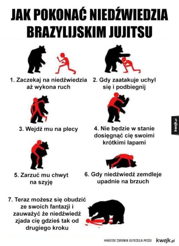 co robić, gdy spotkasz niedźwiedzia na szlaku?